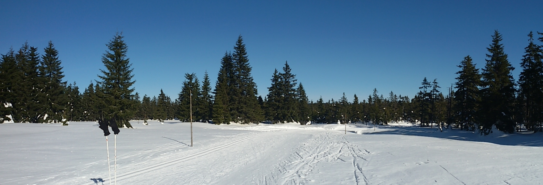 Skilanglauf in Bozi Dar