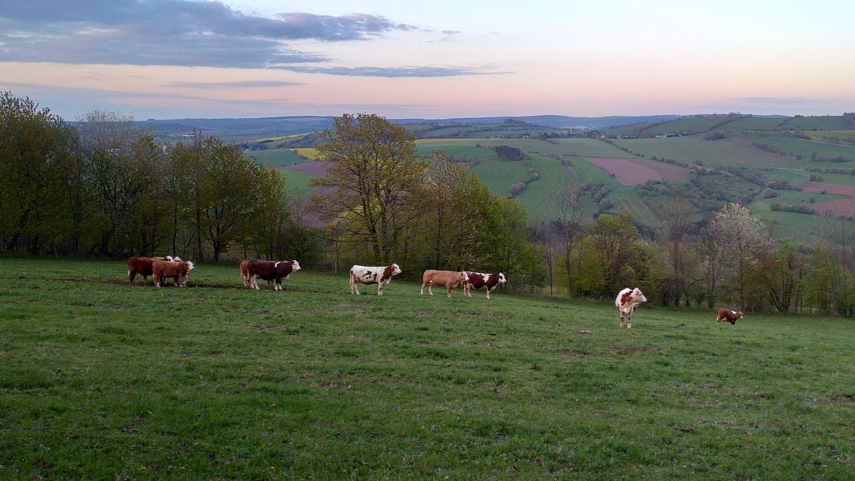 Wandern auf dem Hagebuttenweg - Ausblicke vom Ortsteil Geyersdorf